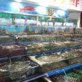 香港の新鮮なシーフードを楽しめる西貢(サイゴン)