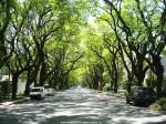 太陽の国アルゼンチン、公園が一瞬でビーチに早変わりする素敵な夏