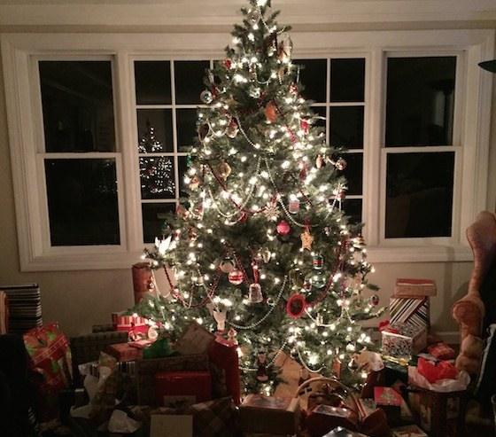 アメリカで独特のゴミになるクリスマスツリー
