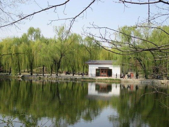 北京のおすすめローカル観光地の円明園