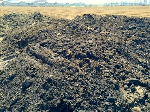 有機肥料のヤギの糞