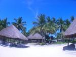 セブ島を拠点に出かけよう!気軽に行けるおすすめ観光地3選