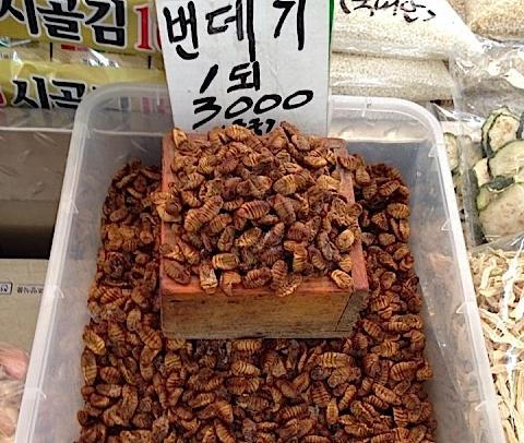 韓国の食べ物「ポンデギ」