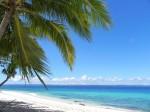 やっぱり来てよかった、フィリピン・セブ島の魅力はコレだ!6選