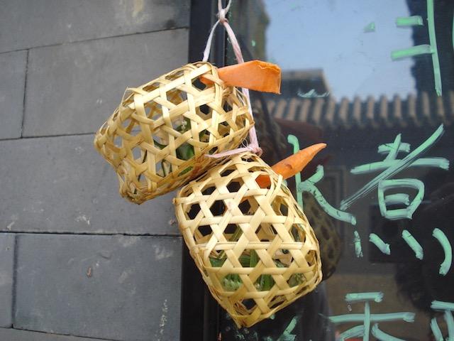 北京で買うコオロギ