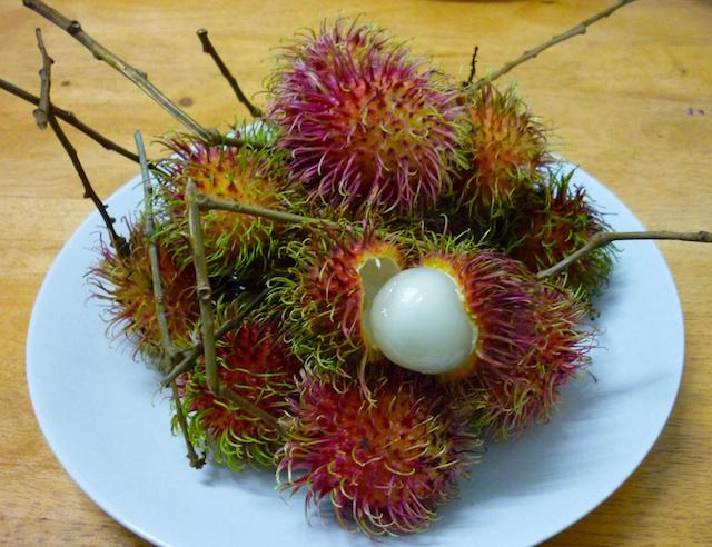 マレーシアのランブータン