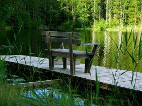 フィンランドの自然
