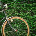 バンコクから一番近い癒しの森!「バーン・カチャオ」でサイクリング