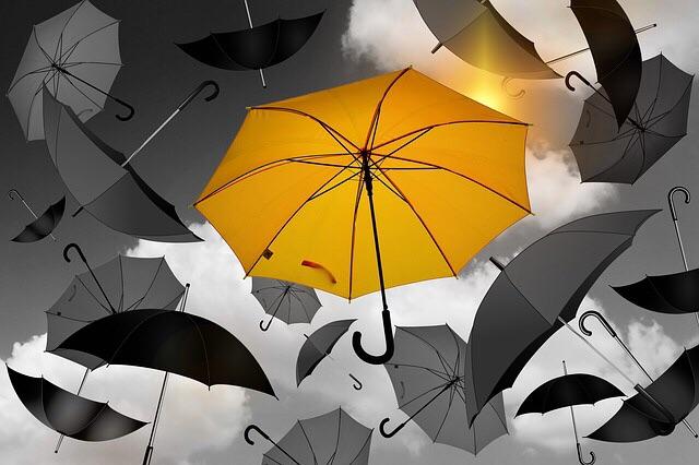 フルトンの傘