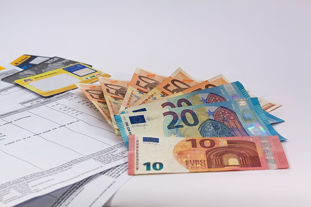 フランスの給与