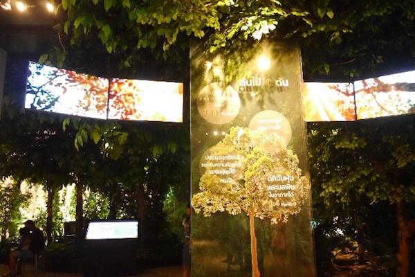 パー・ナイ・クルン(都会の森)の展示室