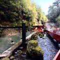 チリで天然温泉に入ろう!チリの温泉のススメ