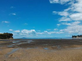 オコロマイ湾で潮干狩り