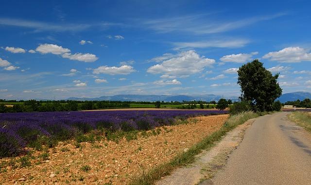 南フランス