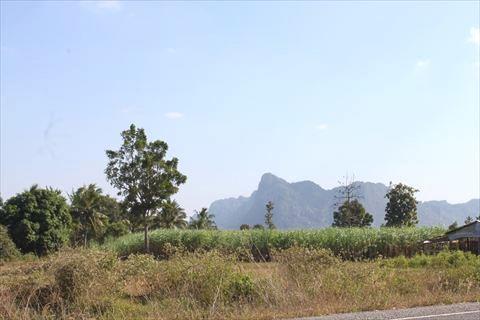 カンポットの山