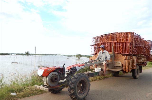 籐の家具、農村から都市へ運びます。