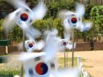 日本にはない食べ物と関連する韓国の不思議な慣習