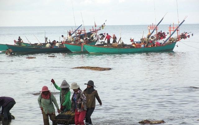 カニ漁と水揚げ
