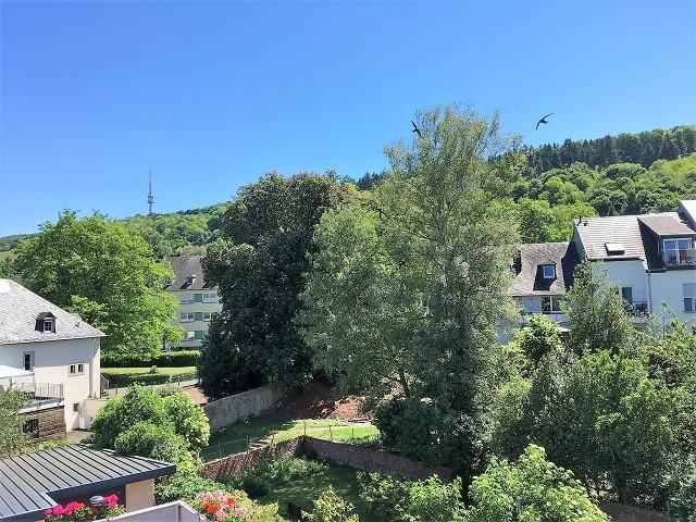 ドイツの自宅からの眺め
