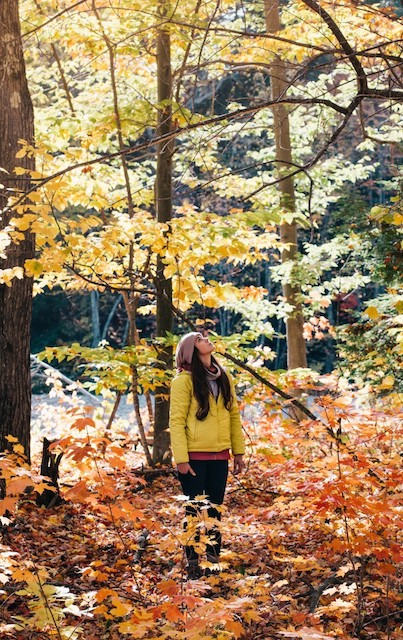 秋のファッション