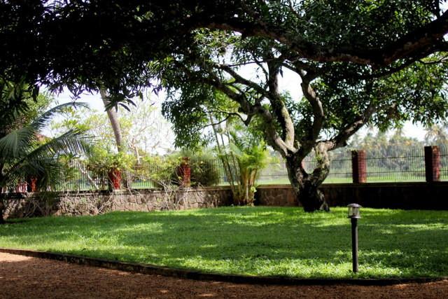 インドの公園
