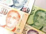 【お金の話】シンガポール生活する30代現地採用の女性のお金事情