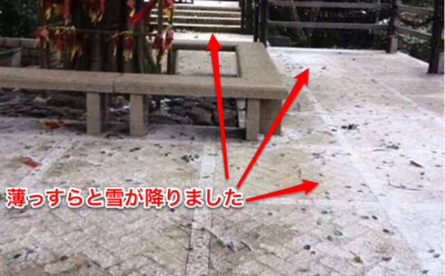 雪が降った広州