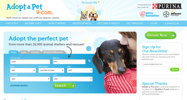 Adopt a pet.com