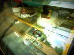 ネパールでスイスロールが食べられるスイーツ店「HERMAN HELMERS」