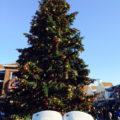 ドイツの素敵なクリスマスとは?ドイツ在住者が楽しみ方を解説