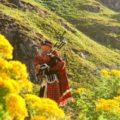 スコットランドの物価は?スコットランドのスーパーで買える商品の料金相場