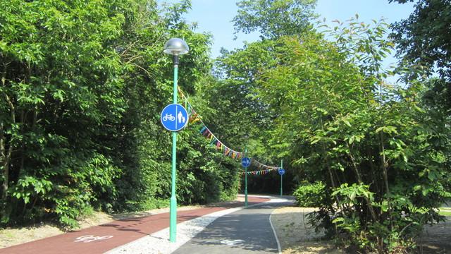 自転車道路