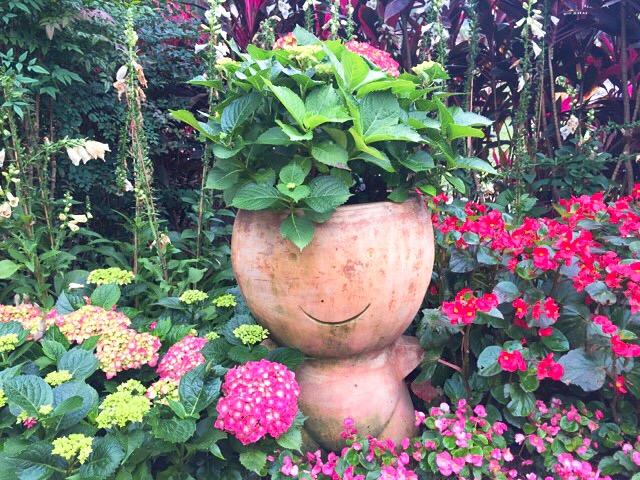 台北の「士林官邸」の花