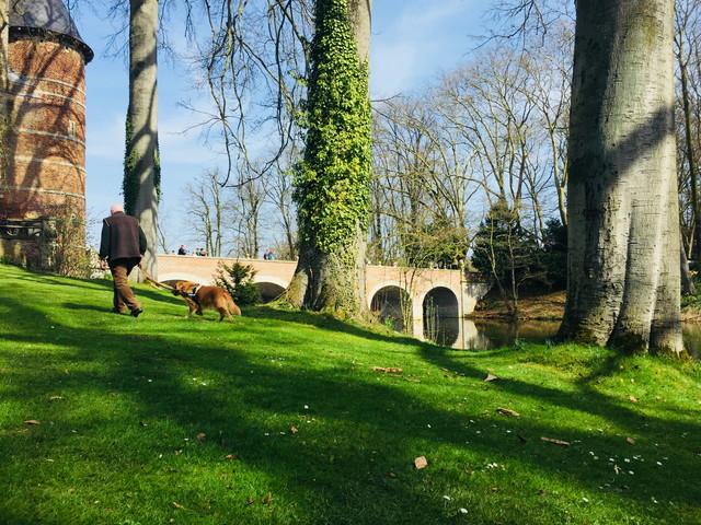 ベルギー 庭