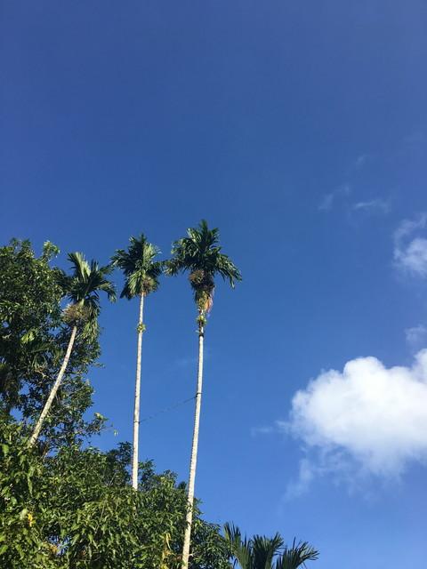 フィリピンの空