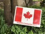 カナダでホームステイしても英語環境じゃない?移民の街「トロントの言語事情とは