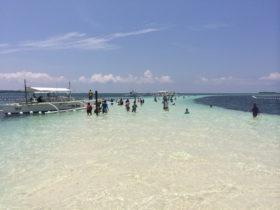 フィリピン・ボホール島