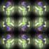 RG江戸紫