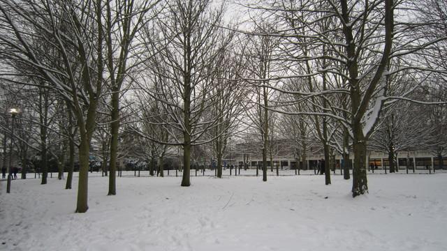 ケント大学の冬