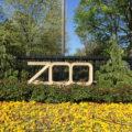 無料で楽しめる!ワシントンDCにあるスミソニアン動物園へ行ってみよう