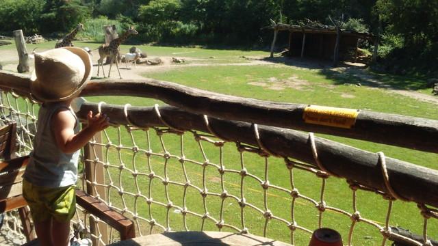ライプツィヒ動物園