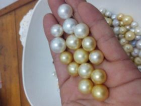インドネシアの真珠