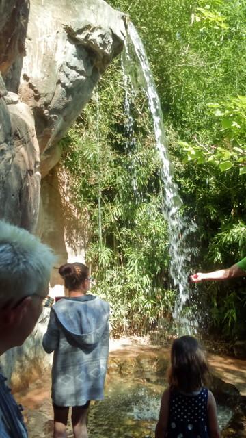 ライプツィヒ動物園の滝