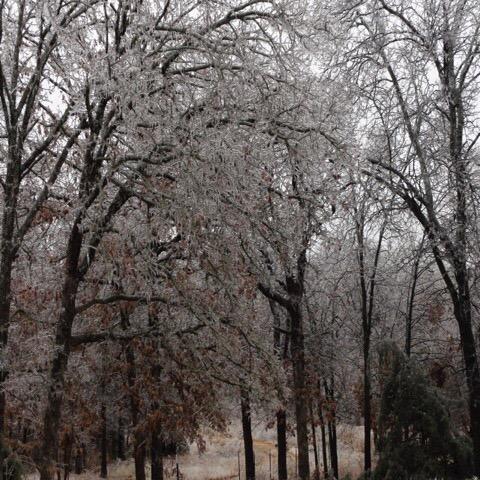 オクラホマの冬