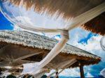 インドネシア・マナドで見られる驚きの習慣とは?