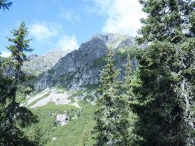 スロバキアの山