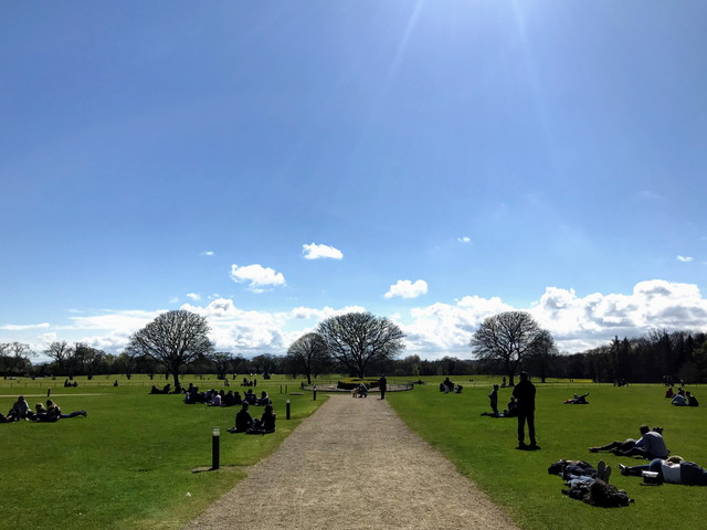 アイルランドの公園