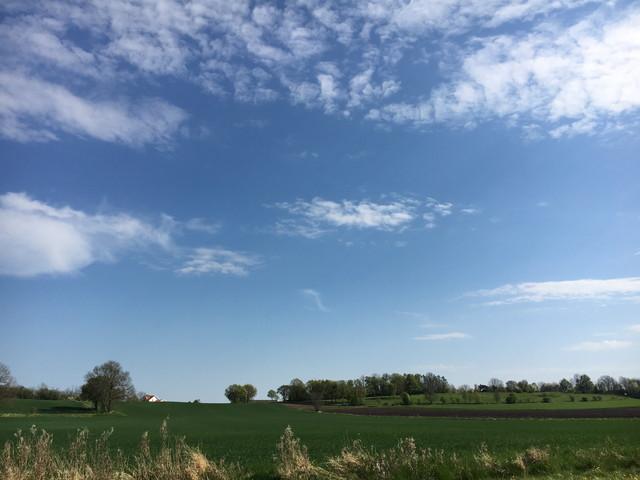スウェーデンの草原