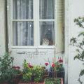 フランス・パリで賃貸アパートを探すには?探し方のヒントとよくあるトラブル