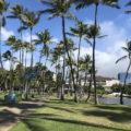 ハワイで働くことの5つの魅力!ハワイで働く日本人が現地から紹介